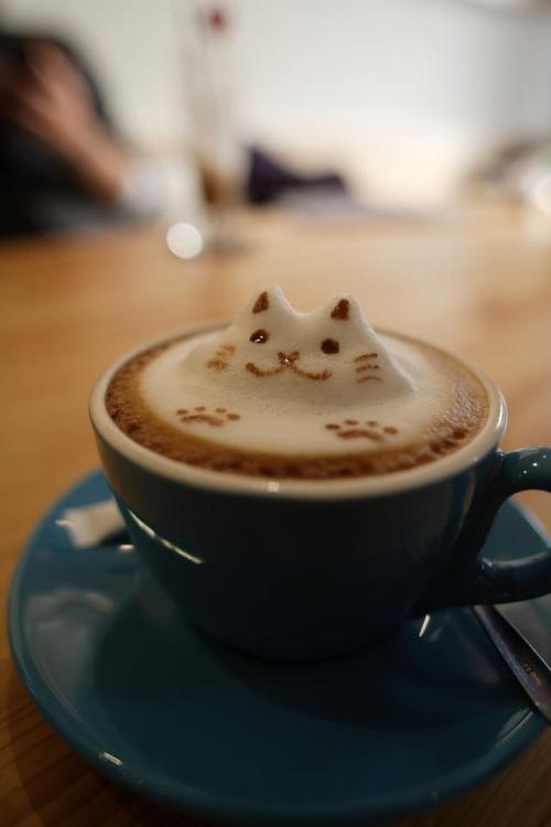 Cat, Coffee.jpg