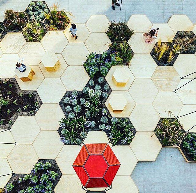 Architecture  - OFL Architecture - Urban Garden.jpg