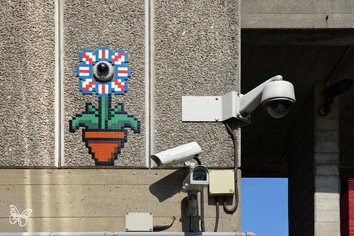 Space Invader - Camera, Flower.jpg
