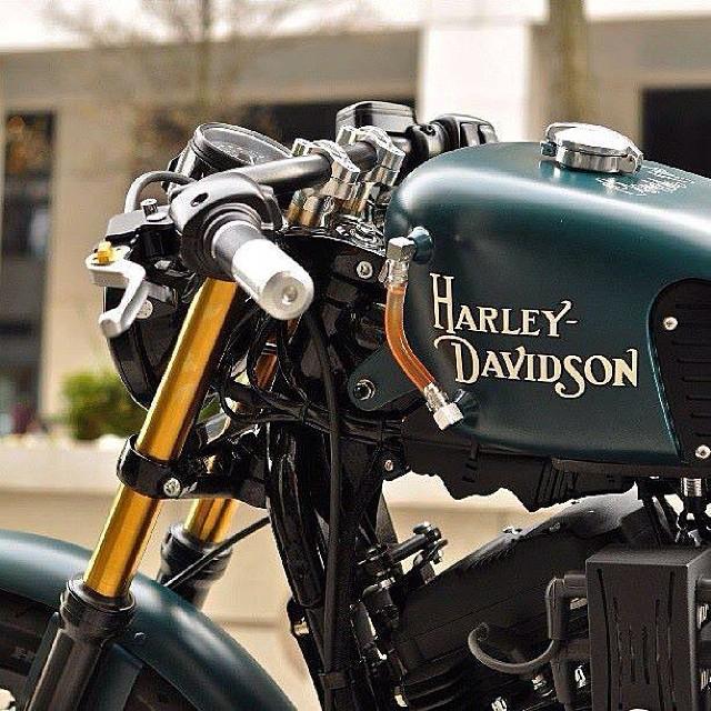 Cars - Harley Davidson.jpg