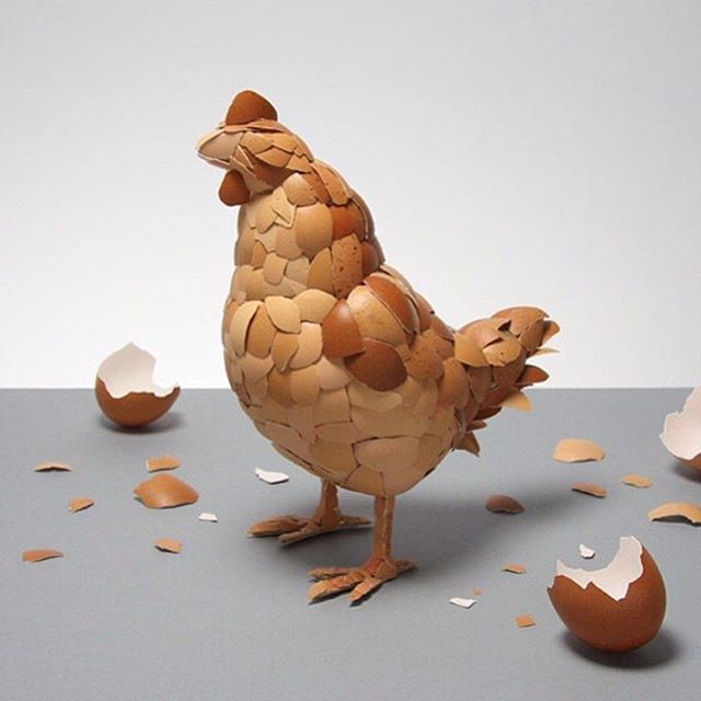 Art - Chicken, Eggshells.jpg