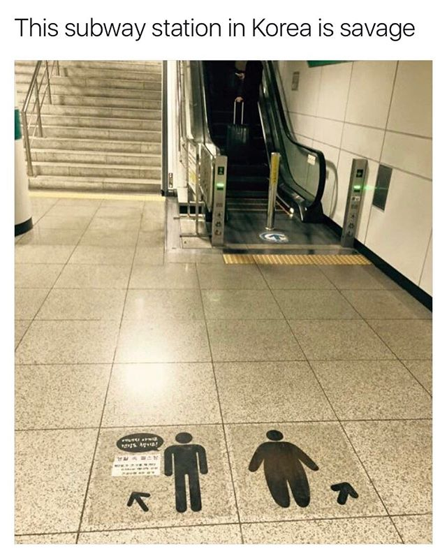Funny - Stairs, Escalator, Funny, Korea.jpg