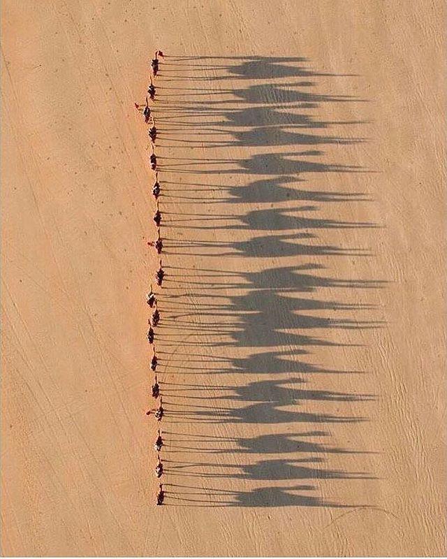 Photography - Sahara.jpg