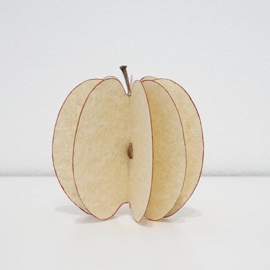 Photography - Mateo Lopez, Apple.jpg