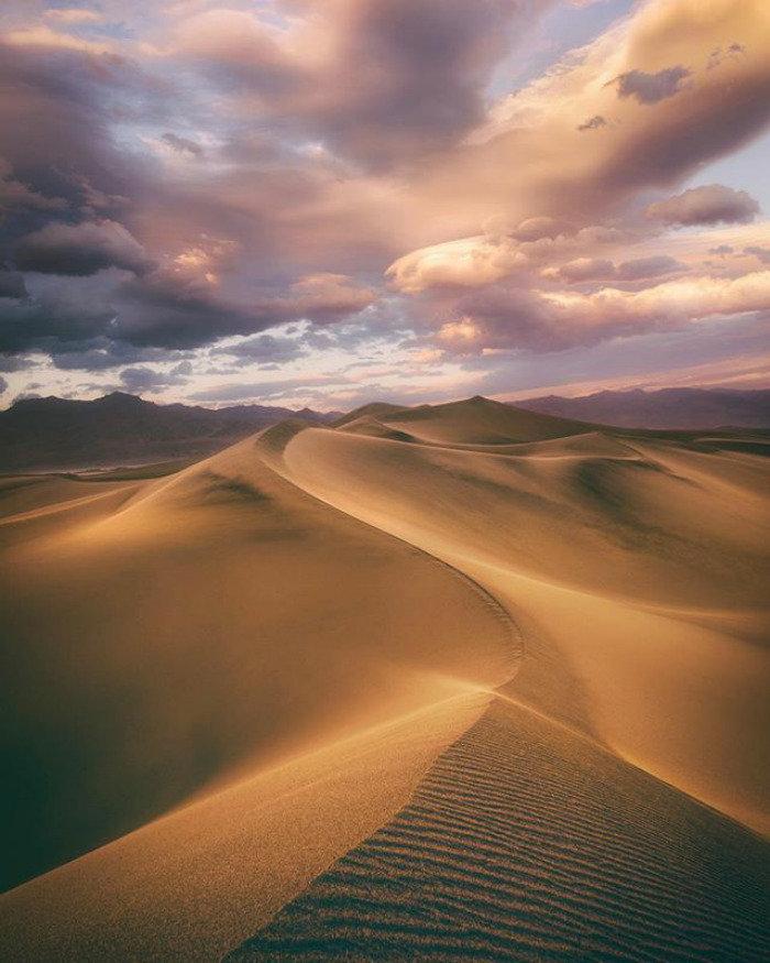 Photography - Tom Anderson, Death Valley, Brown.jpg
