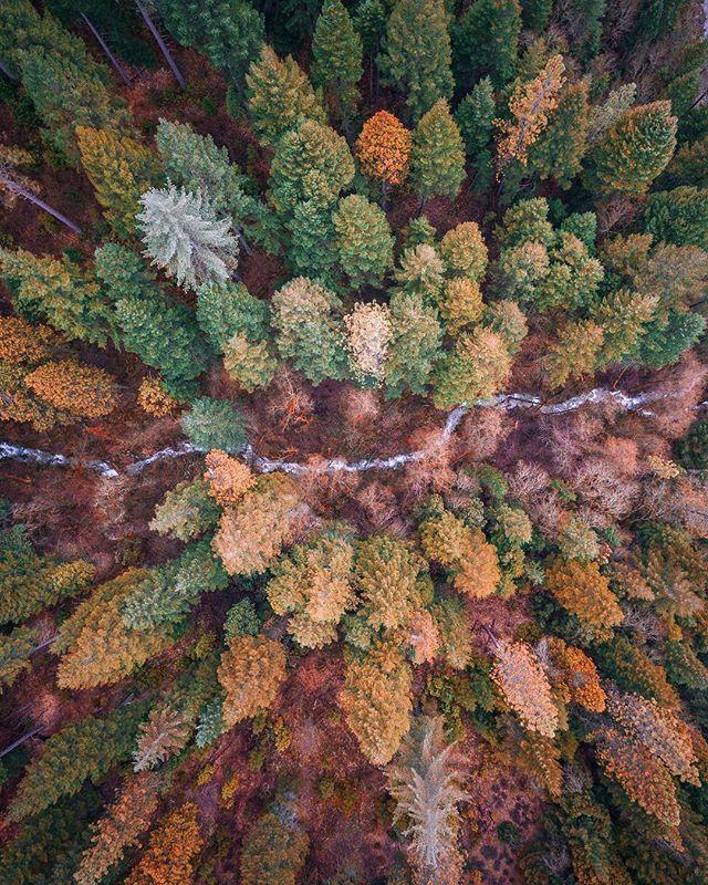 Photography - Niaz Uddin, Columbia River Gorge.jpg