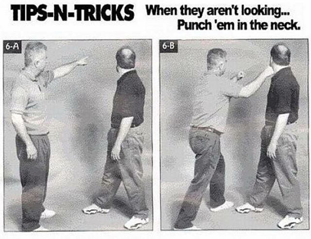 Funny - MMA, How to Fight.jpg