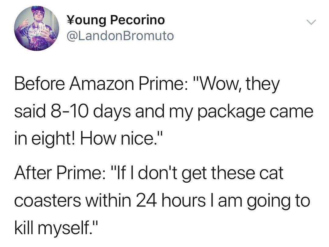 Funny - Amazon Prime, Young Pecorino.jpg