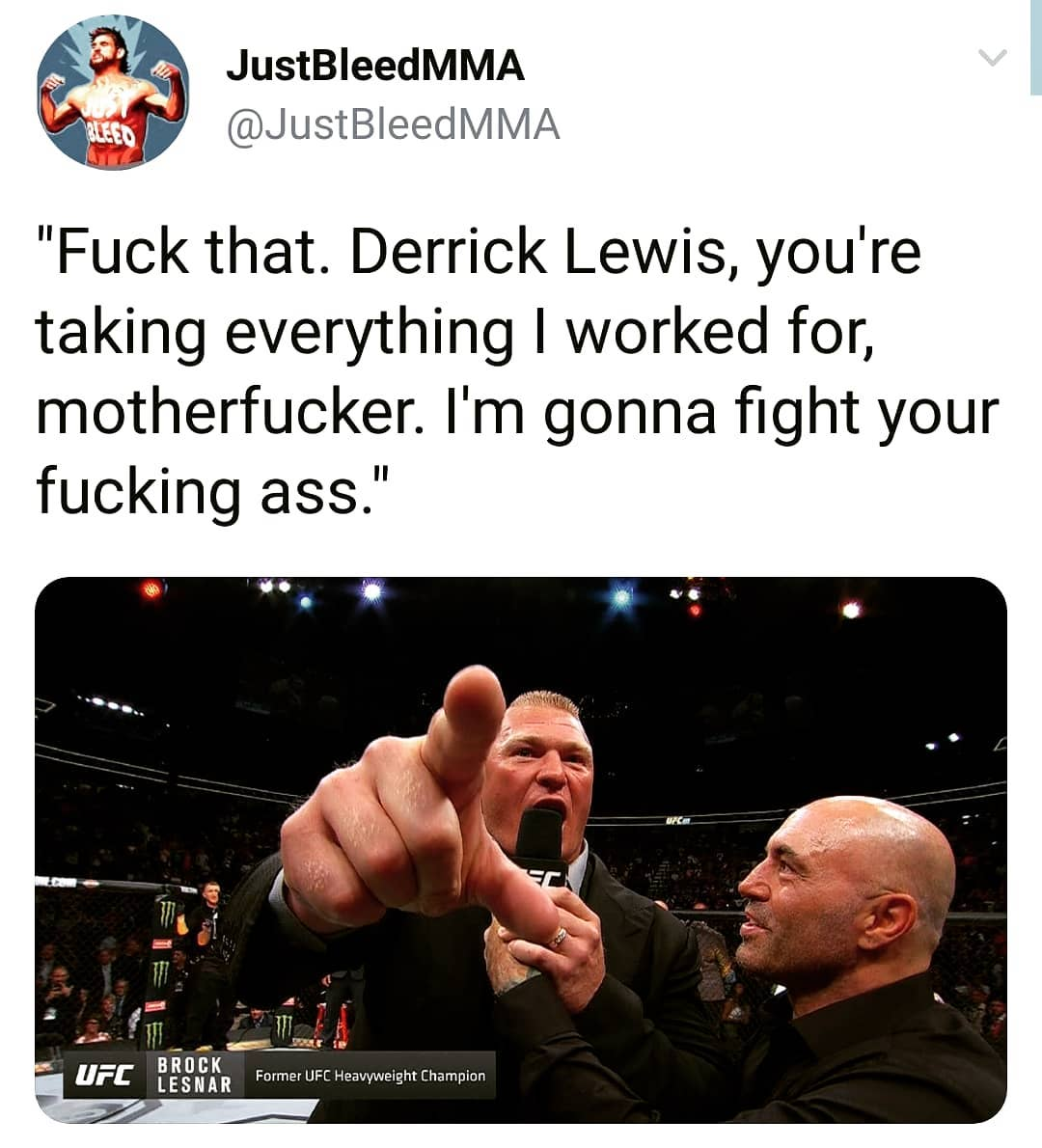 MMA - Brock and Lewis.jpg